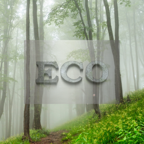 eco wiosna.png